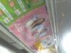 070324sakurayama