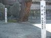 100220sennonji_039