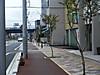 120503tsushima_67