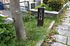 140419fukuoka_405